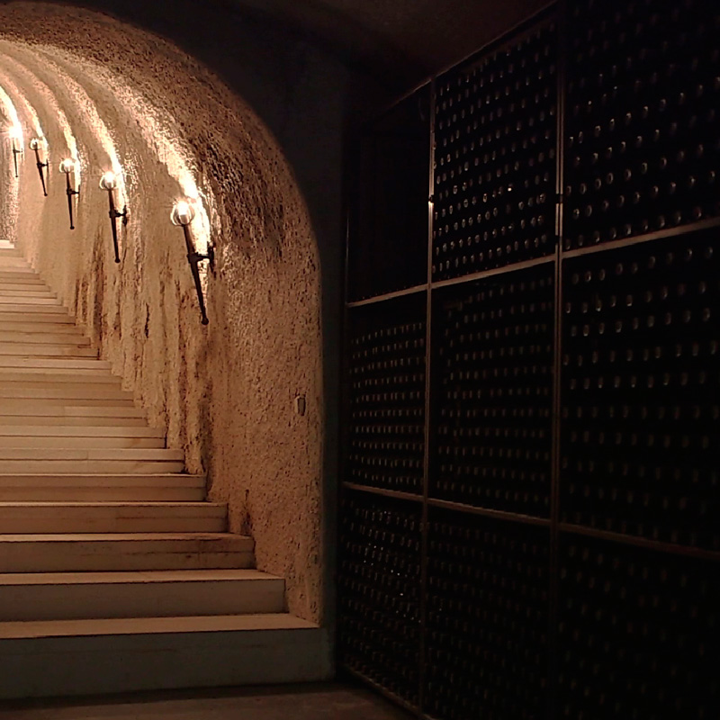 <p>Go down to one OF THE<br>